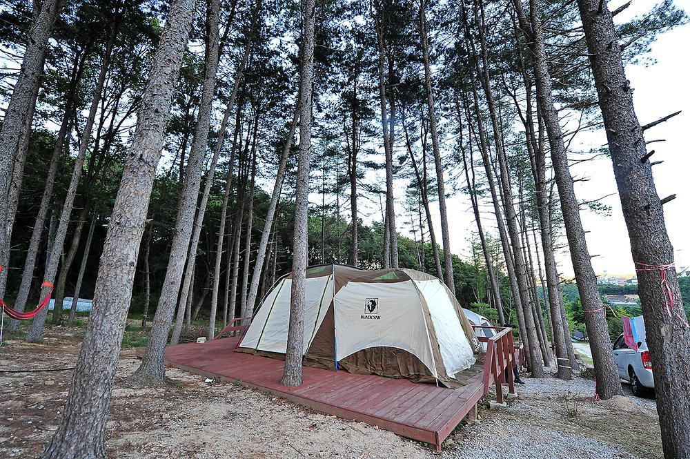 가래골농원 캠핑장2