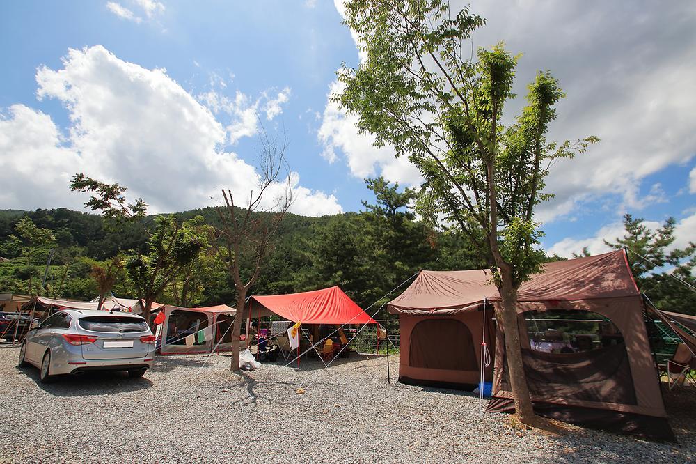 505펜션&캠핑(오공오)