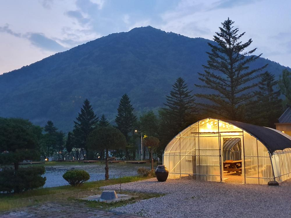 구절초마을 캠핑장